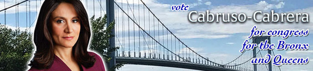 vote-for-bronx