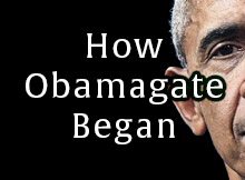 How Obamagate Began